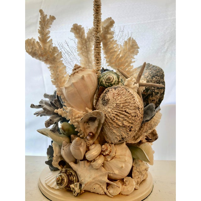 Contemporary Organic Seashell Table Lamps - a Pair For Sale - Image 3 of 4