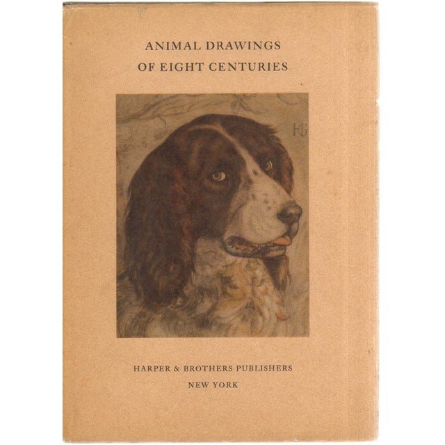 Eight Centuries Animal Drawings For Sale