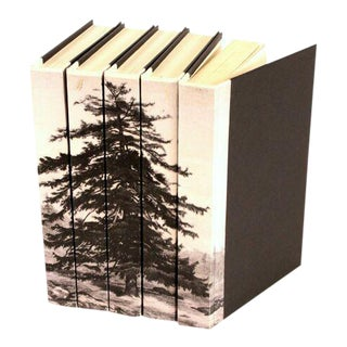Image Collection Black & White Spruce Tree Books - Set of 5 For Sale