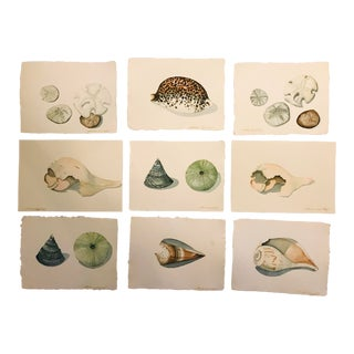 20th Century Original Watercolors by Artist Sheldon Leigh Bergh - 9 Pieces For Sale