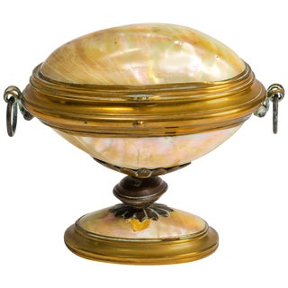 19th Century English Shell Box For Sale