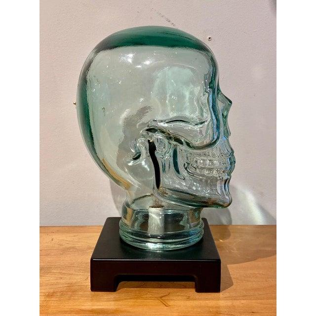 Modern Modern Glass Skull Lamp For Sale - Image 3 of 12