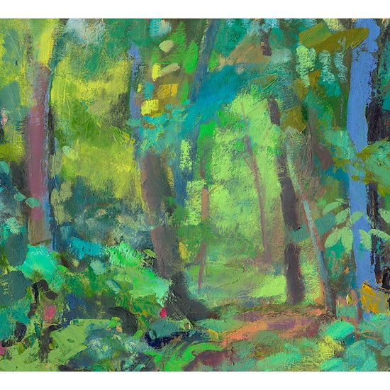 """""""Path in the Woods"""" In Northeastern Pennsylvania there are so many beautiful places in nature. This one is by my home at..."""