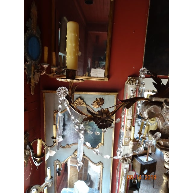 Early 19th Century 19th Century Italian Crystal Chandelier For Sale - Image 5 of 13