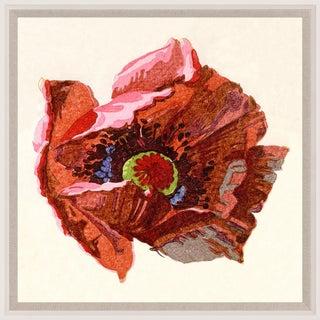 Pignier, Flowerhead 3, Framed Artwork For Sale