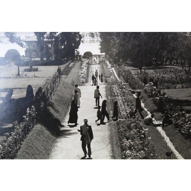Mughal Garden Kashmir Garden Photograph For Sale - Image 9 of 10