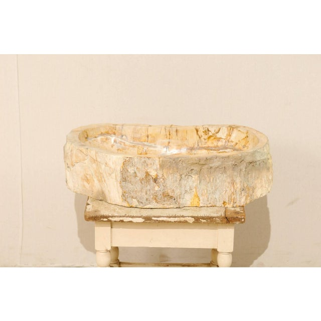 Contemporary Organic Modern Petrified Wood Sink For Sale - Image 3 of 8
