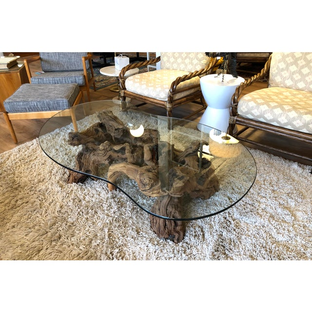 Boho Chic Vintage Burl Wood Root and Tempered Glass Coffee Table. For Sale - Image 3 of 10