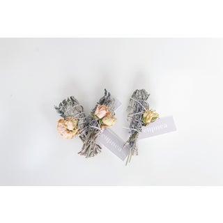 Sage | Lavender + Rose Preview