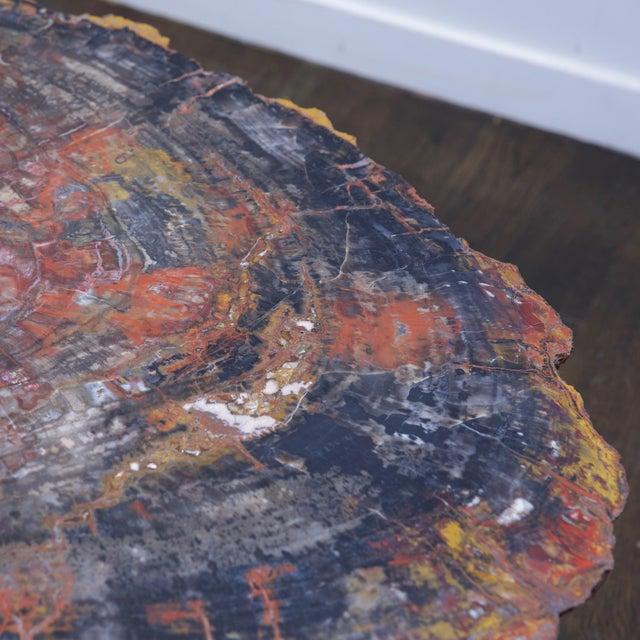 Black Karl Springer Petrified Wood Side Table For Sale - Image 8 of 10