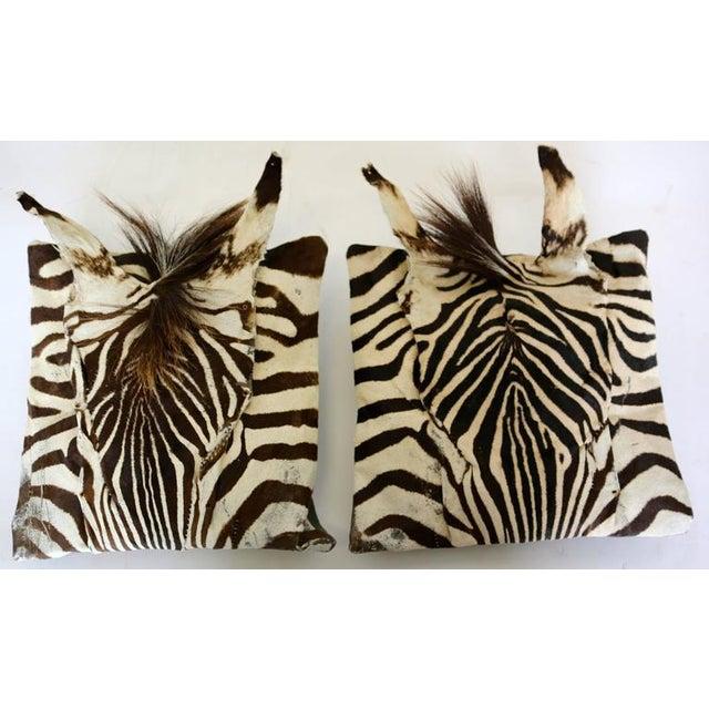 Real Animal Skin Pillows : Authentic Zebra Skin Pillows - Set of 3 Chairish
