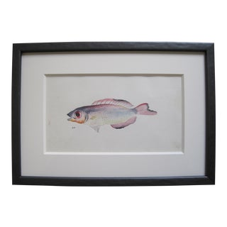 19th C Original Watercolor Painting For Sale