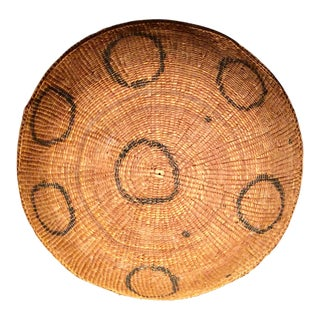 Brazilian Yamomami Rainforest Indian Coil Basket For Sale