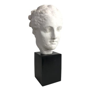 1970's Classical Roman Style Female Bust For Sale