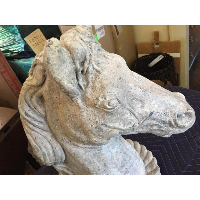 French Concrete Horse Heads, circa 1950s For Sale - Image 3 of 9