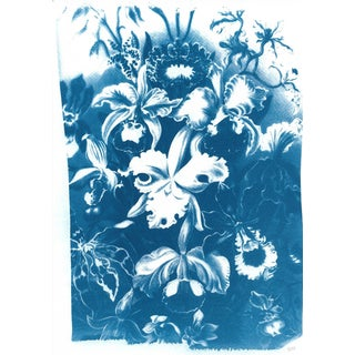 Vintage Floral Scene, Cyanotype Print on Watercolor Paper, Limited Edition For Sale