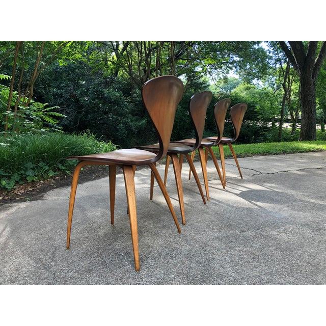Plycraft Norman Cherner for Plycraft Chairs - Set of 4 For Sale - Image 4 of 13