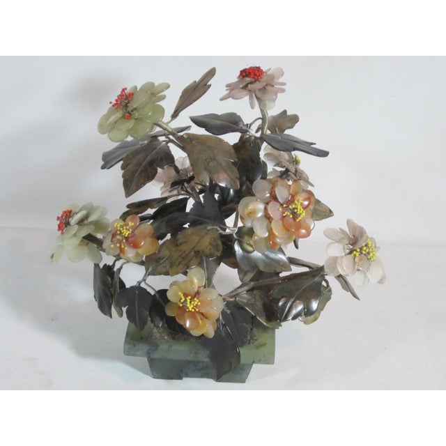 Asian Jade Tree in Planter - Image 2 of 5