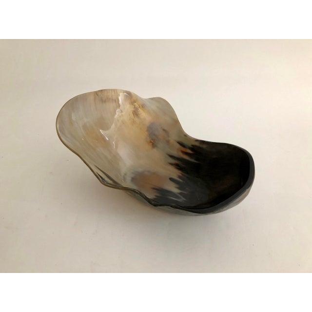 Bone Organic Modern Steer Horn Bowl For Sale - Image 7 of 7