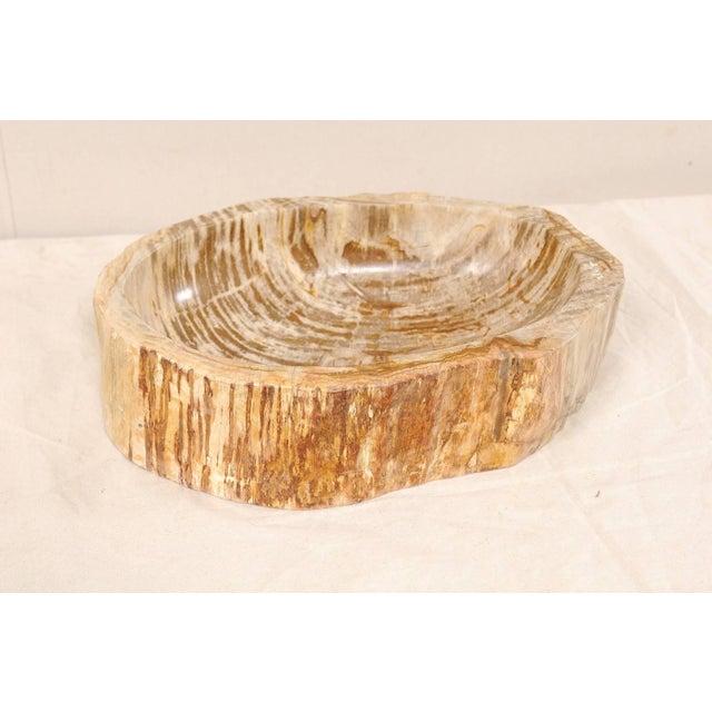 Wood Organic Modern Polished Petrified Wood Sink For Sale - Image 7 of 9