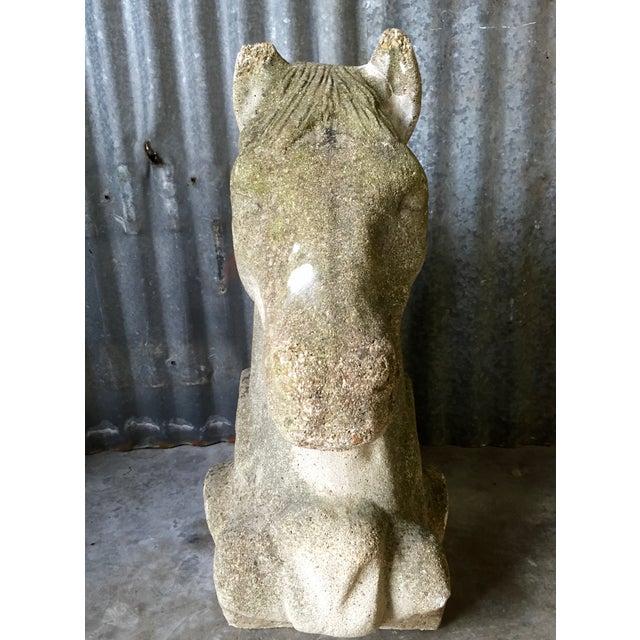 Antique Concrete Horse Head For Sale - Image 4 of 11