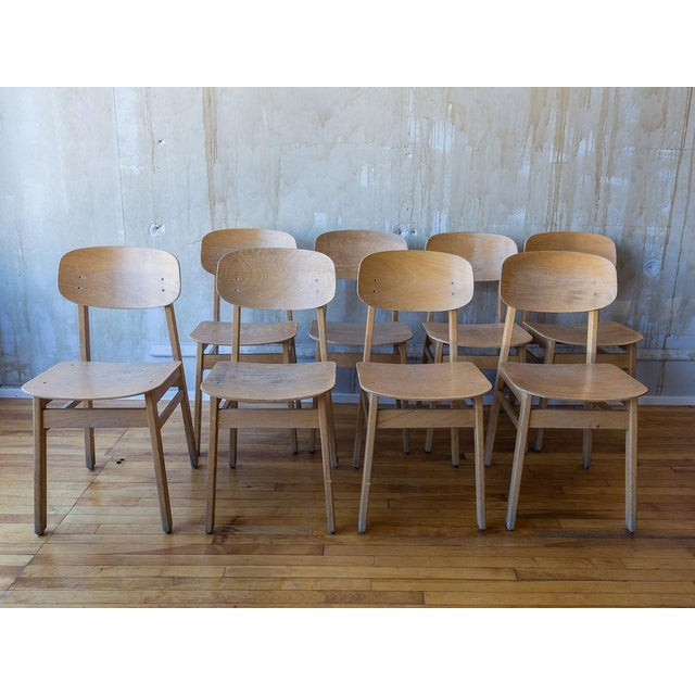Set of eight vintage beech wood veneer plywood school chairs from Italy. Italian manufacturer circa 1960/70. Very sturdy...