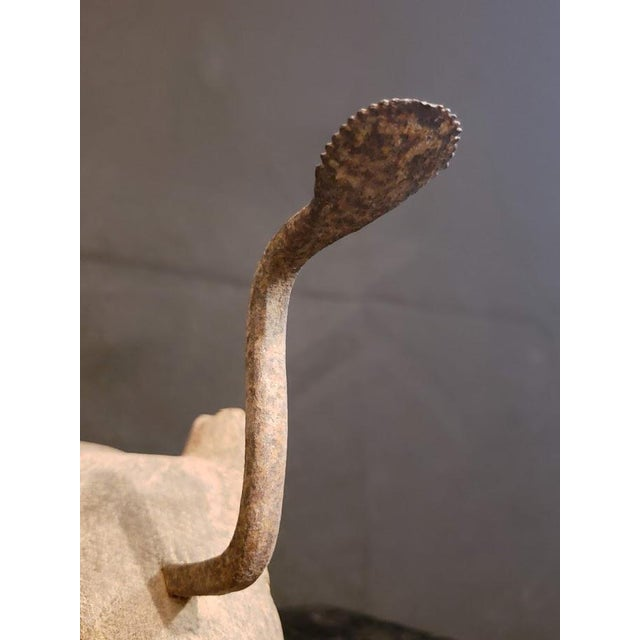 Early 20th Century Thai Rabbit Teak Coconut Scraper For Sale - Image 5 of 7