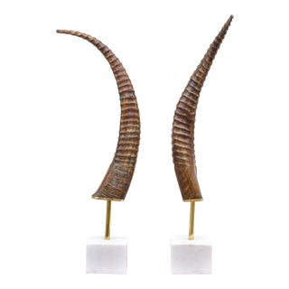 Horns Mounted on Marble - a Pair For Sale