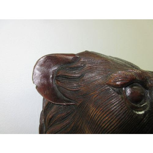 Hand Carved Mahogany Lion Tiger Head Wall Mount - Image 8 of 8