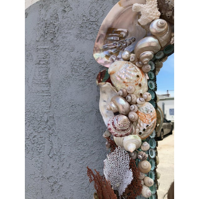 Christa's South Seashells Organic Modern Seashell and Coral Mirror For Sale - Image 4 of 5
