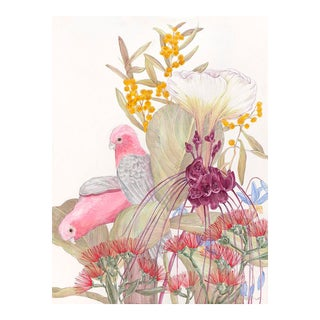Allison Cosmos Galahs and Inflorescence Contemporary Painting
