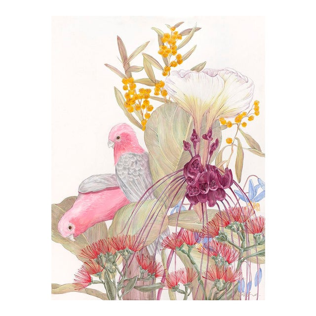 Allison Cosmos Galahs and Inflorescence Contemporary Painting For Sale