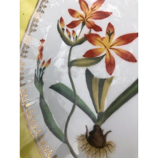 Chelsea House Hand Painted Floral Botanical Yellow Gilt Porcelain Marquis Tray Preview