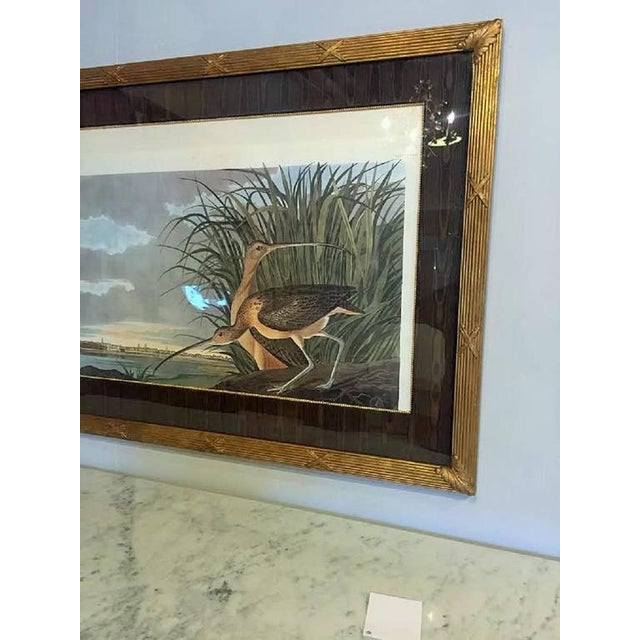 A print of two birds in the forest. Finely matted and wonderfully framed in a giltwood X decorated frame.