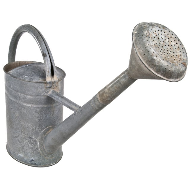 Industrial European Bat Watering Can For Sale - Image 3 of 5