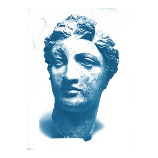 Greek Terracotta Head of a Woman Cyanotype Print For Sale