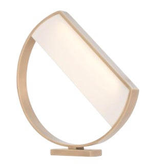Arteriors Modern Antique Brass and Acrylic Luna Table Lamp For Sale