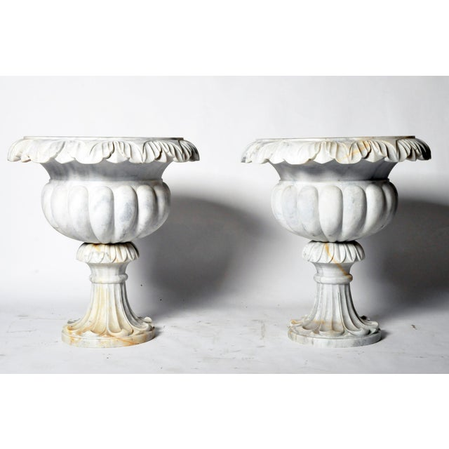 The variegated marble perfectly compliments these shapely urns. They are beautifully carved from the ruffled foliate rims,...