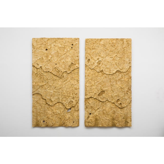 Sophie Coryndon, Dossel Diptych, Uk, 2018 For Sale - Image 9 of 9