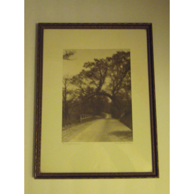 1920s Signed SepiaPhoto by Helene Gould Allene - Image 6 of 7