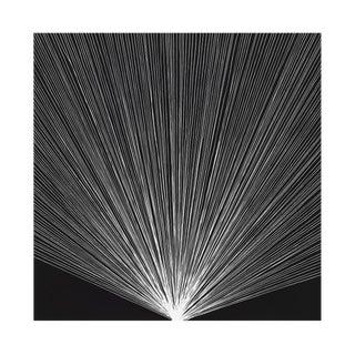 "Tenesh Webber ""Flash 1"", Photograph For Sale"