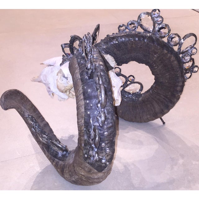 Rams Skull Adorned With Swarovski Crystals - Image 4 of 5
