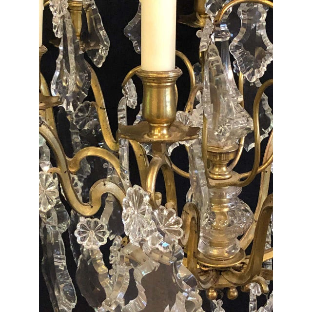 French Bronze and Crystal Gilt Chandelier, Louis XVI Style For Sale - Image 11 of 13