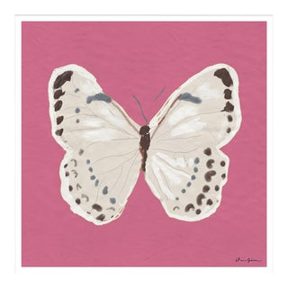 """""""White Monarch in Pink"""" By Dana Gibson, Framed Art Print For Sale"""