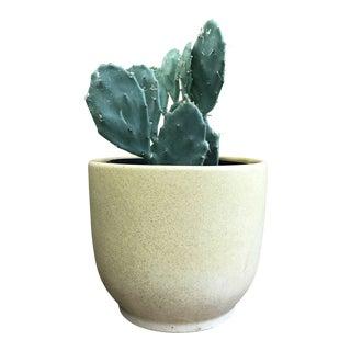 T-10 Gainey Ceramics Planter For Sale