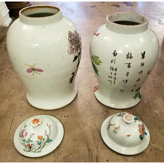 Qing Dynasty Lidded Ginger Jars - a Pair For Sale - Image 9 of 13