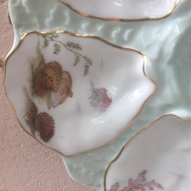 French Limoges French Oyster Porcelain Sealife Plate For Sale - Image 3 of 11