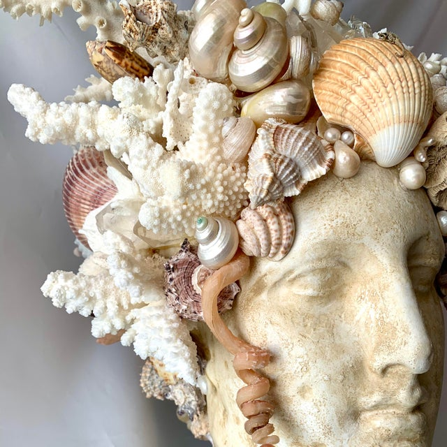 Large Shell Hygiea Bust For Sale In West Palm - Image 6 of 12