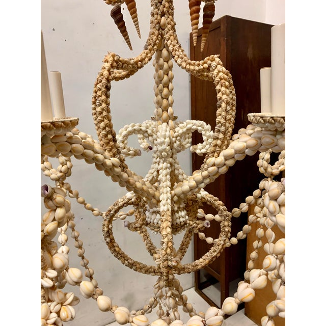 Large Scale Shell Chandelier -5 Arm For Sale - Image 9 of 10