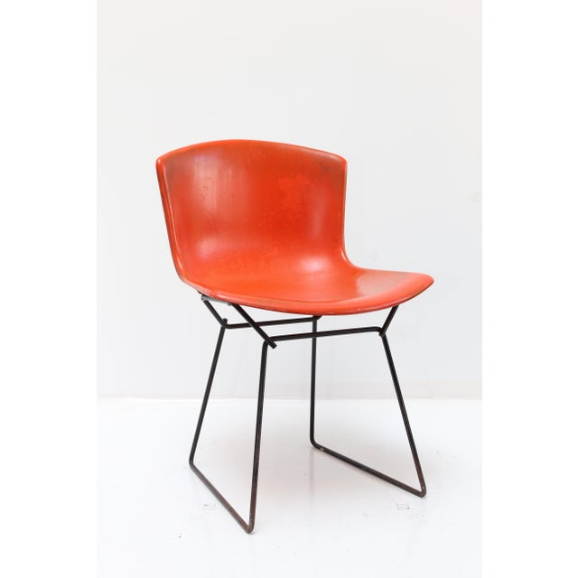 Knoll Bertoia Fiberglass Side Chair Red-Orange For Sale - Image 11 of 11